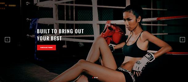 Absolute Fitness - multipurpose WordPress theme